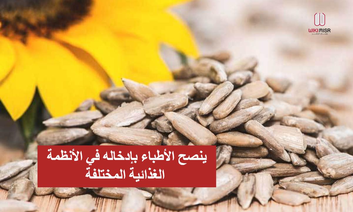 فوائد اللب السوري كثيرة لصحة الانسان لذلك ينصح الأطباء بتناول القليل منه بصورة منتظمة