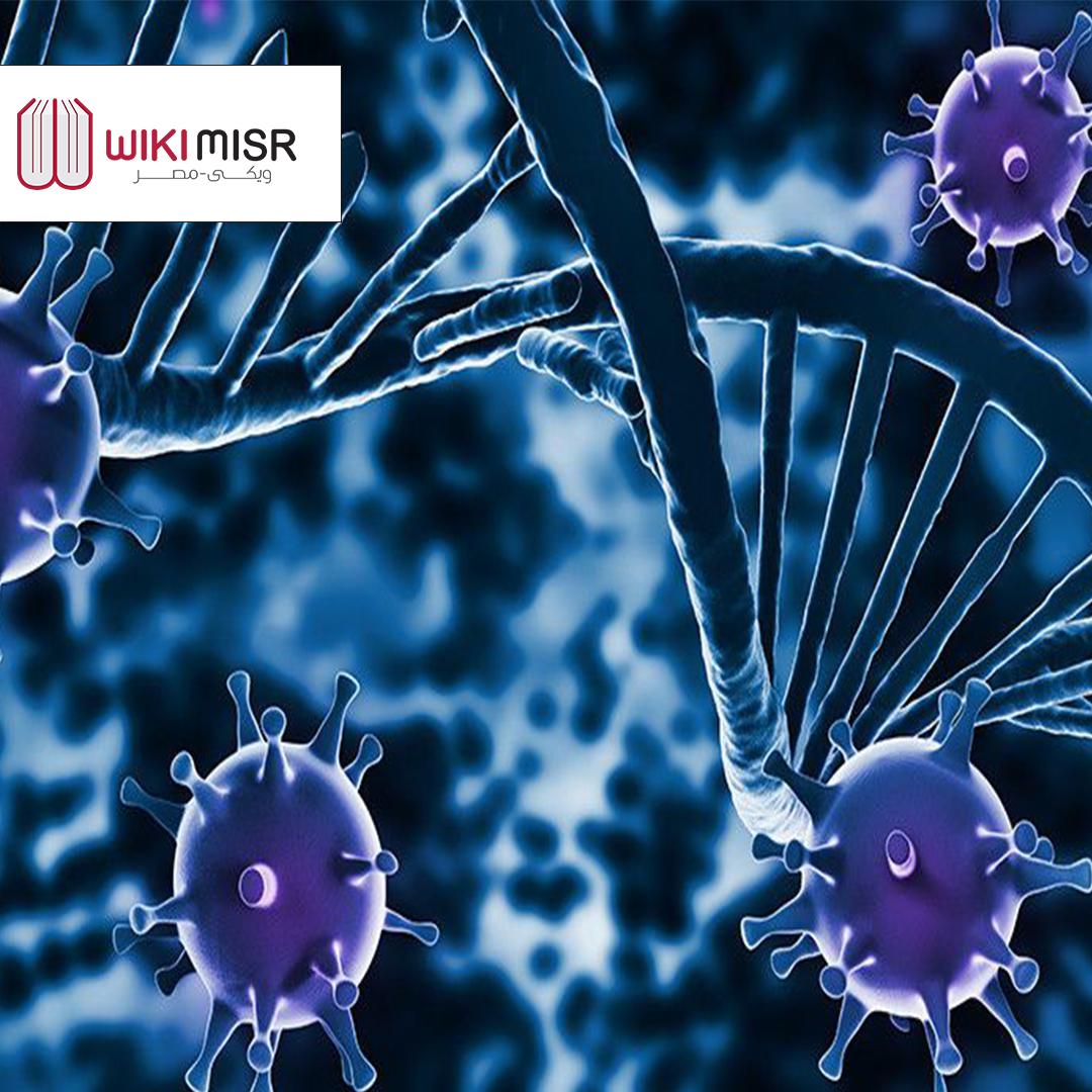 ما هو الجهاز المناعي ووظيفته في جسم الإنسان