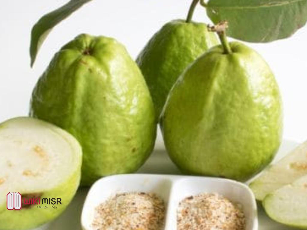 15 فائدة من فوائد ورق الجوافة لجسم الإنسان