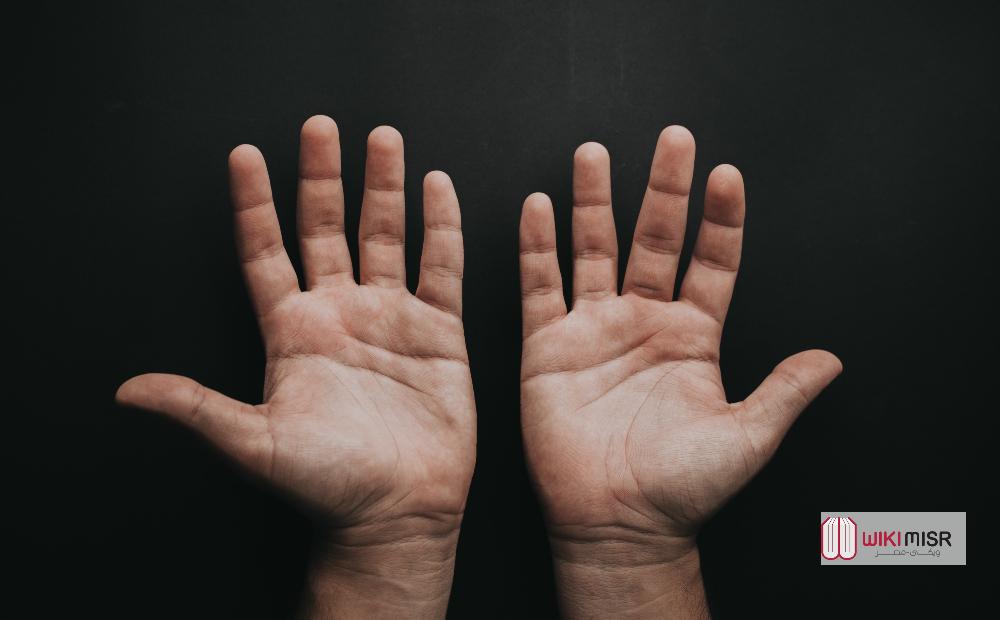 أسماء الأصابع الموجودة في اليد والقدم