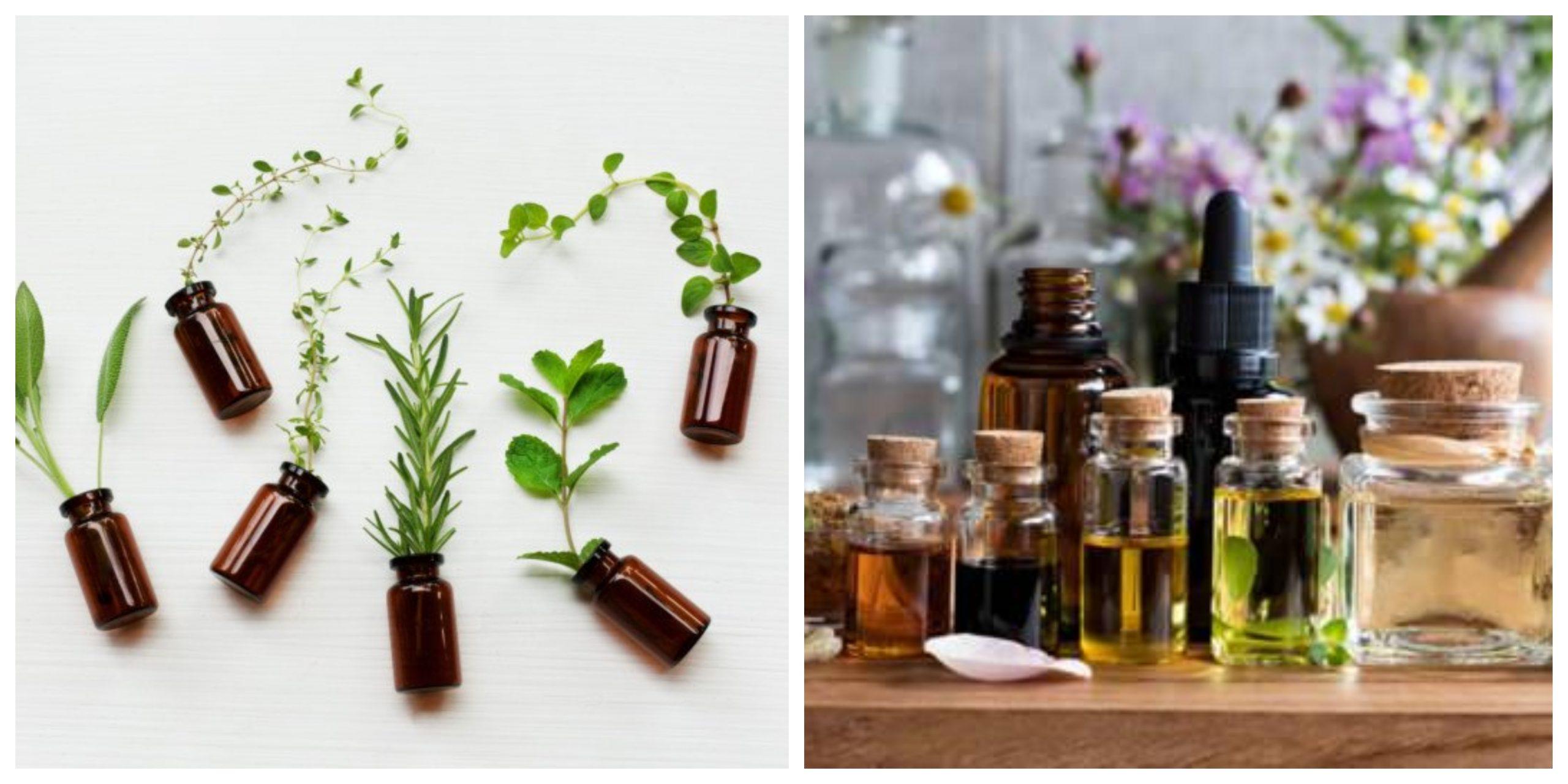 أفضل زيوت عطرية تحافظ على توازن الهرمونات في جسدك