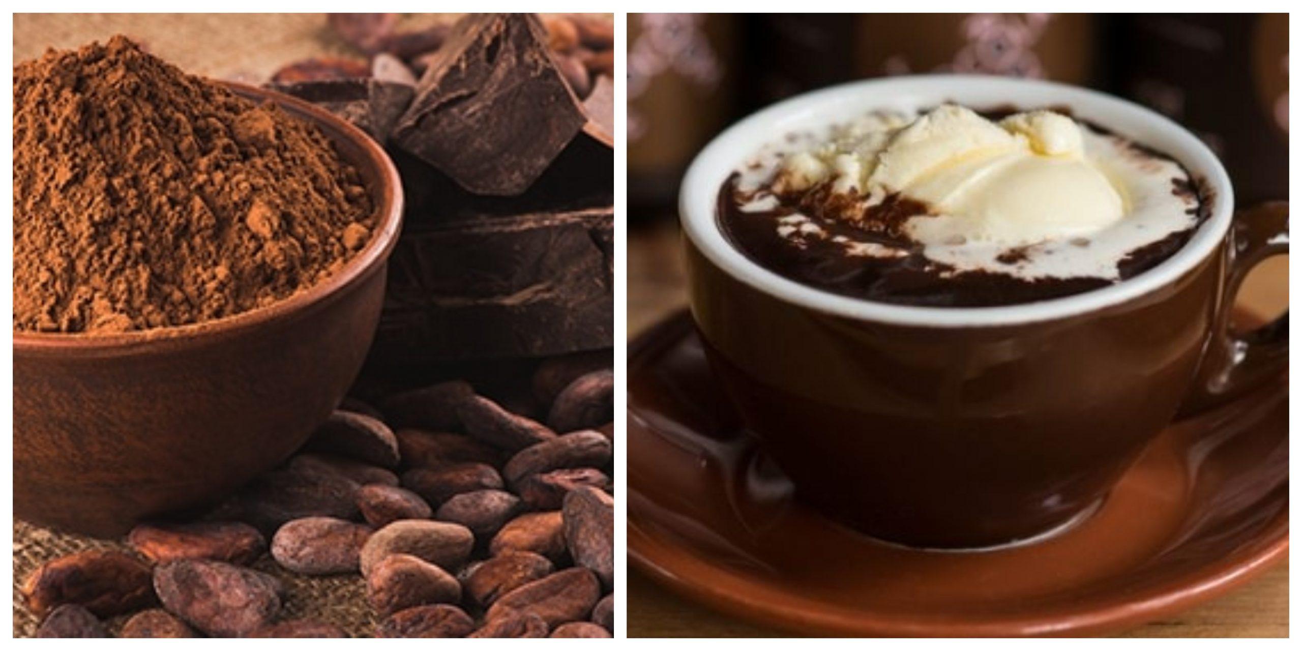 الفوائد الصحية الرائعة لتناول الكاكاو