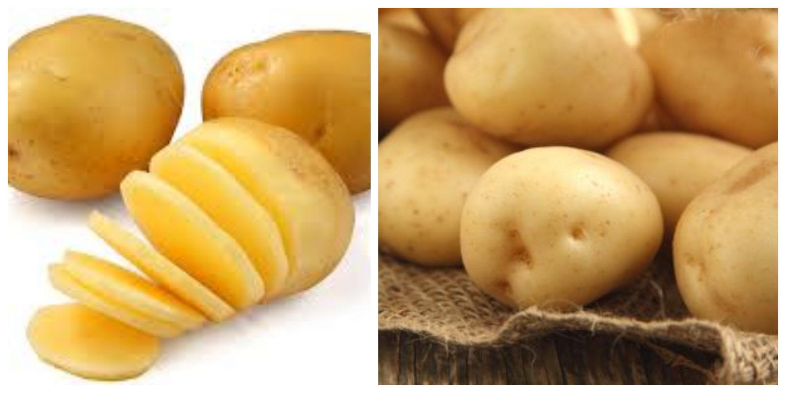 الفوائد الصحية لتناول البطاطس ليست سبب زيادة الوزن