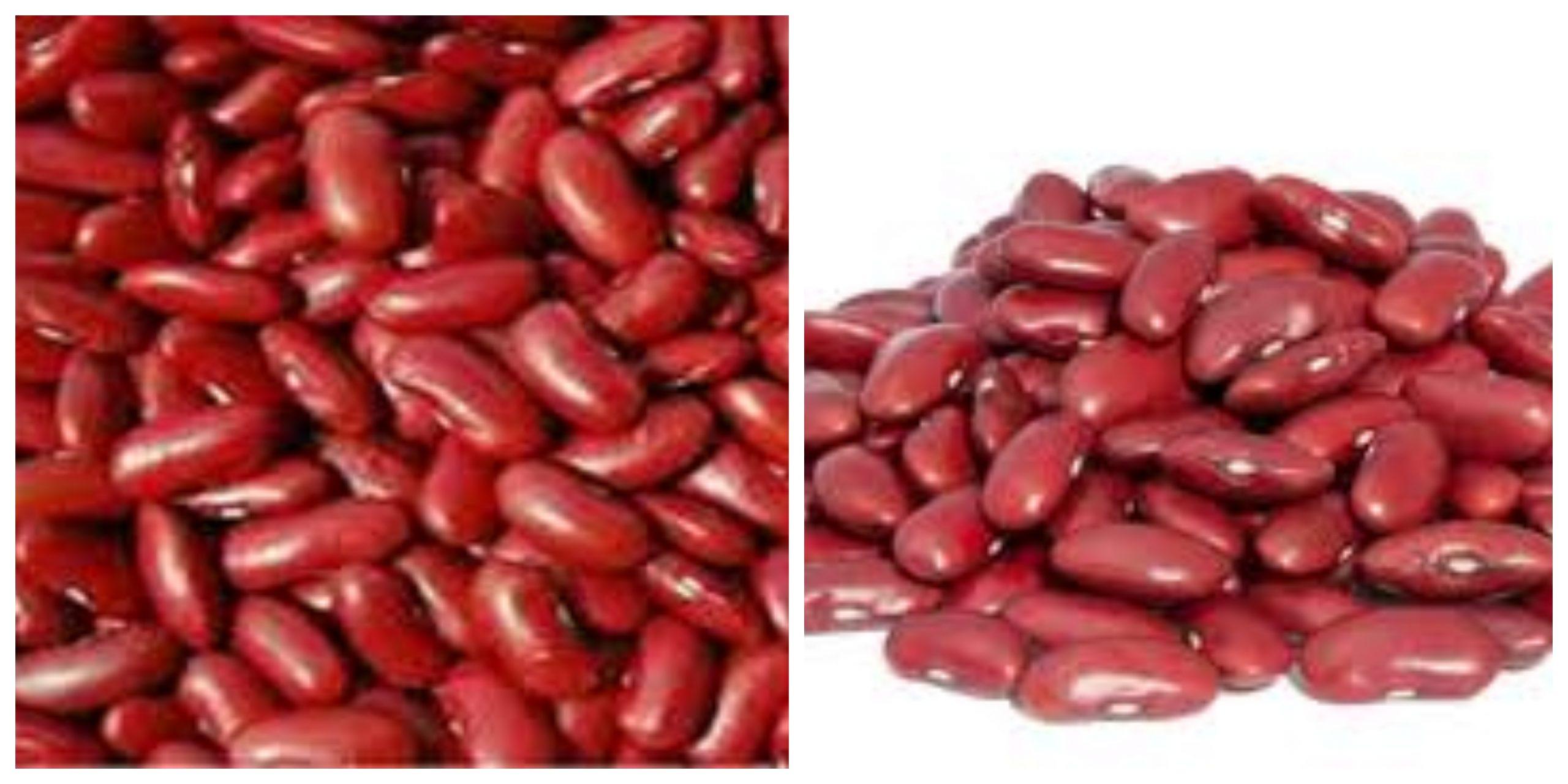 الفوائد الصحية لتناول الفاصوليا الحمراء