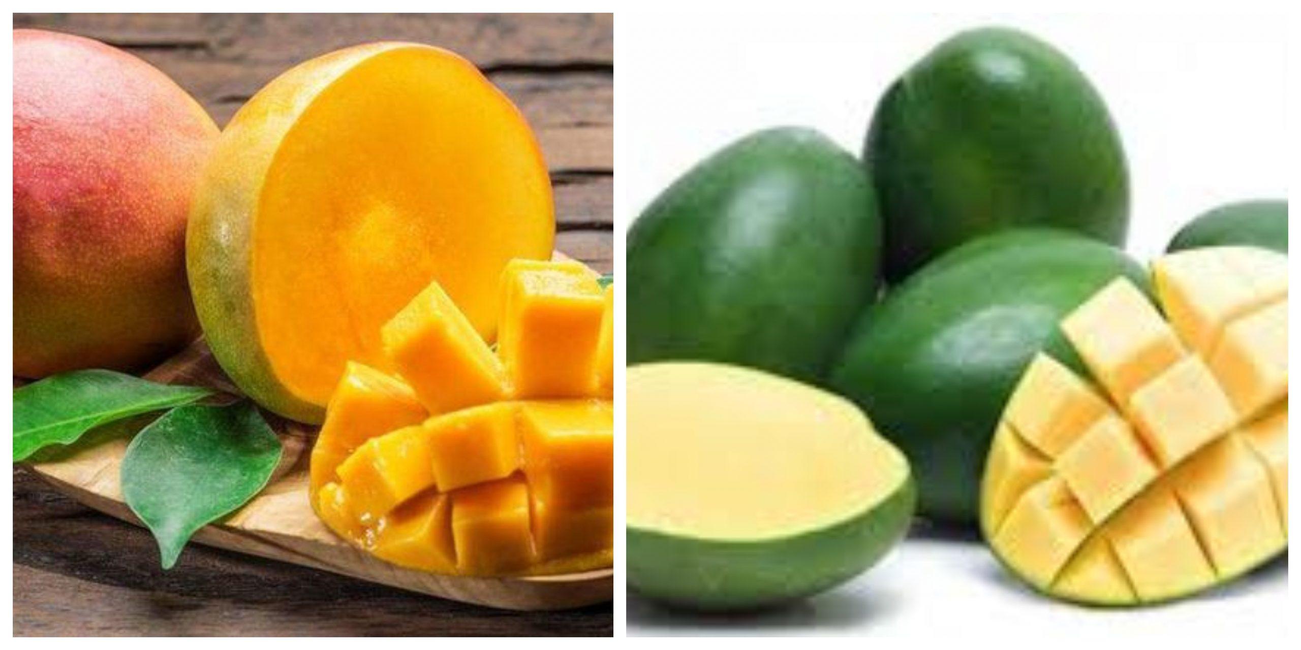 الفوائد الصحية لتناول المانجو الأخضر والطريقة المثالية لأكله