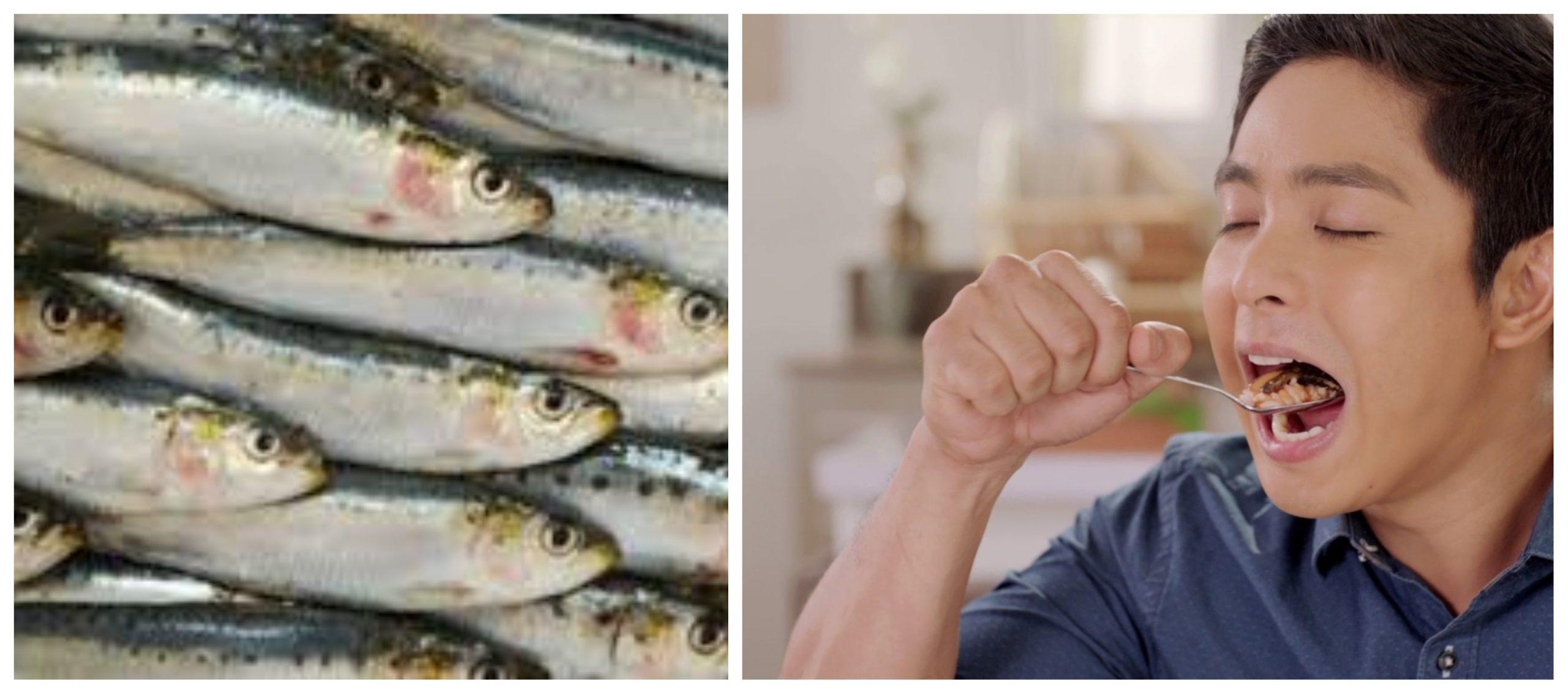 5 فوائد صحية ممتاز لتناول أسماك السردين