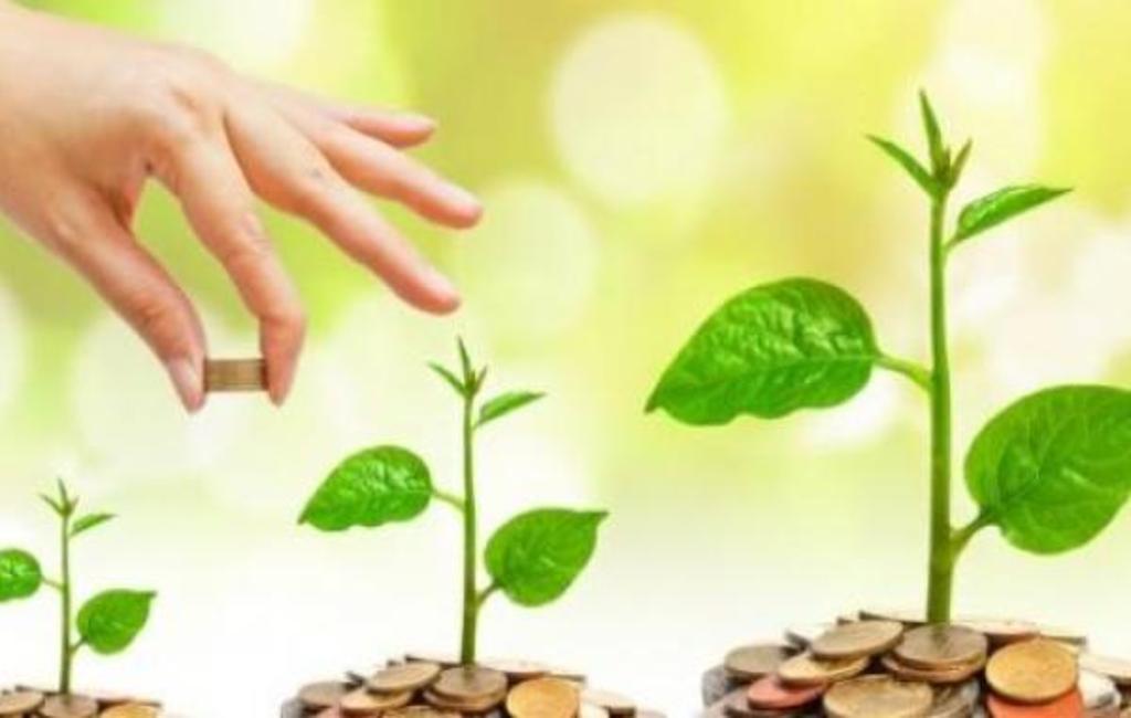 شروط الحصول على قرض من جهاز تنمية المشروعات الصغيرة والمتوسطة