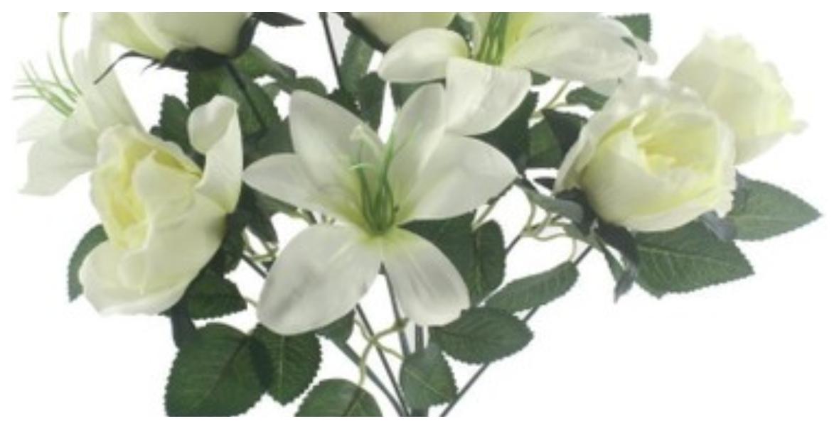 خلفيات ورد أبيض