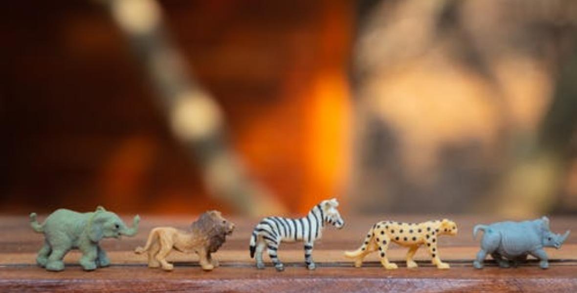 الحيوانات الصغيرة من صور ألعاب الأطفال