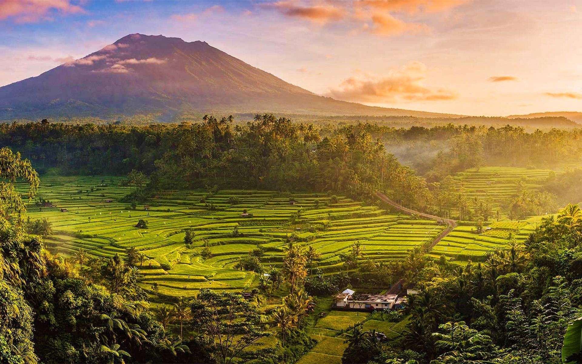 صور من إندونيسيا