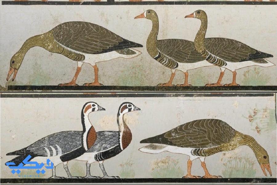 جدارية أوز ميدوم، المتحف المصرى.
