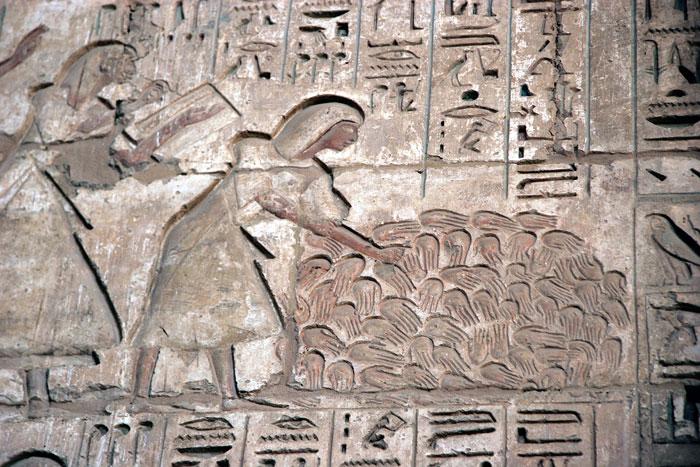 لماذا قطع المصريين القدماء أيدى والأعضاء الذكورية للأعداء فى المعارك؟