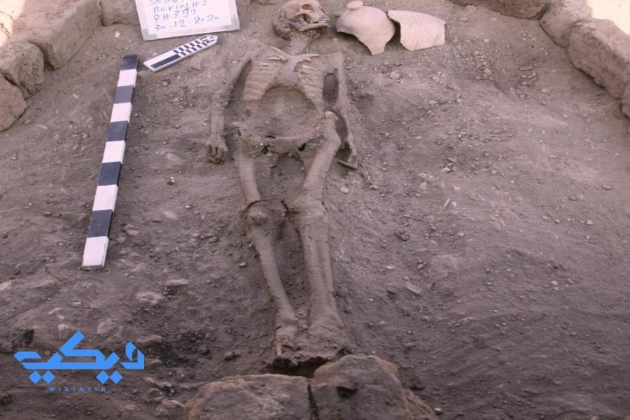 دفنة آدمية بموقع الكشف الجديد.
