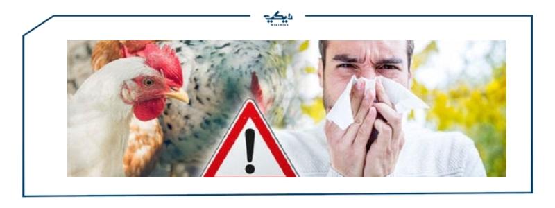 اعراض انفلونزا الطيور