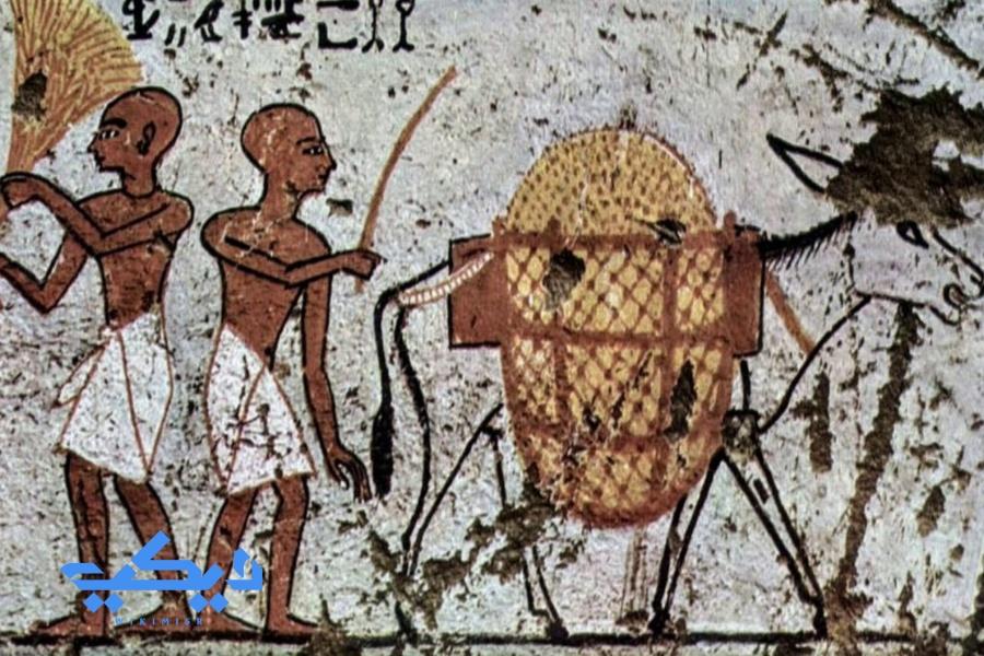 الفلاحة والضياع فى مصر القديمة.