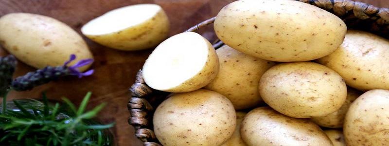 رؤية البطاطس في المنام