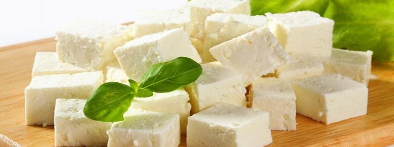 طريقة حفظ الجبنة البيضاء في الفريزر