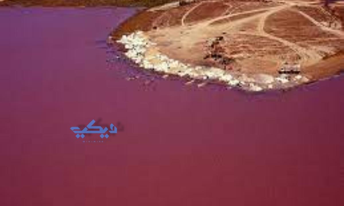 بحيرة الدم في العراق